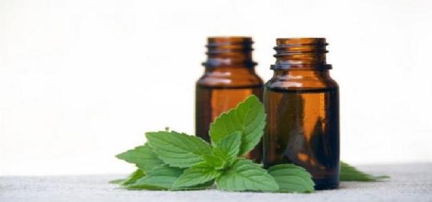 الفوائد المتعددة لزيت النعناع4 - الفوائد المتعددة لزيت النعناع