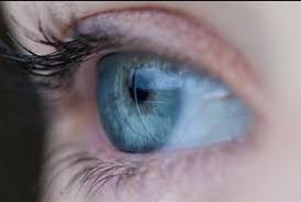 المياه الزرقاء في العين 1 1 - المياه الزرقاء في العين