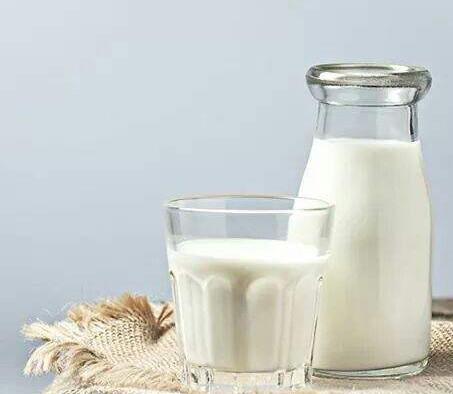 فوائد الحليب ومشتقاته للجسم2 - فوائد الحليب ومشتقاته للجسم