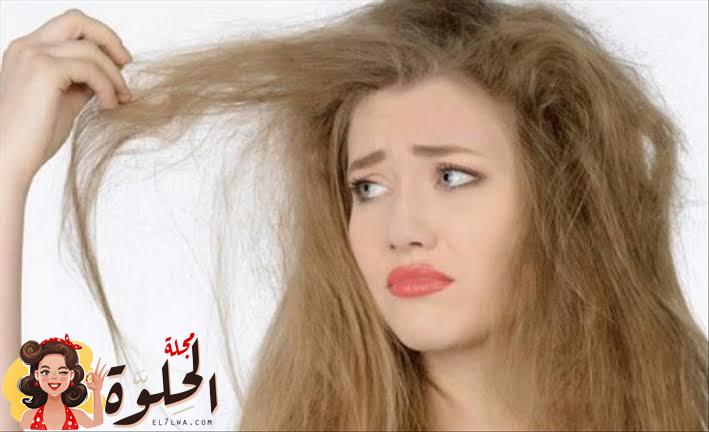 images 91 - وصفات لعلاج تقصف وهيشان الشعر افضل وصفات لعلاج هيشان الشعر