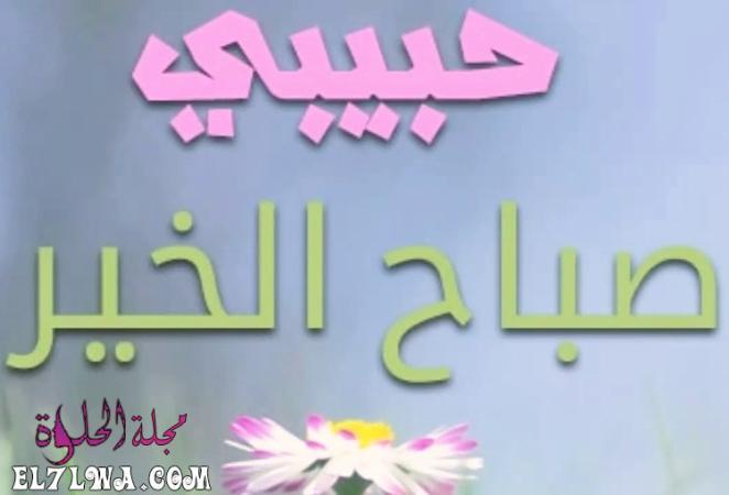 2251 2 - صباح الخير حبيبي أجمل كلمات الصباح للحبيب