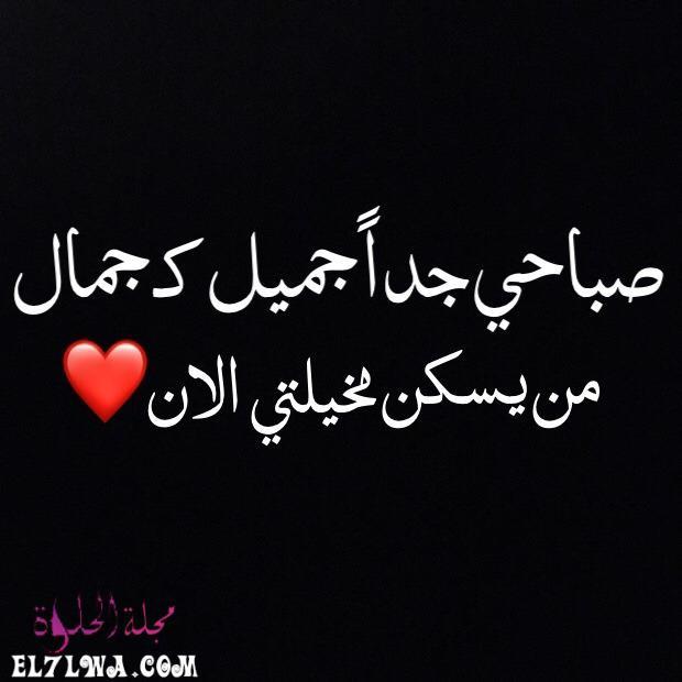 4769 - صباح الخير حبيبي أجمل كلمات الصباح للحبيب