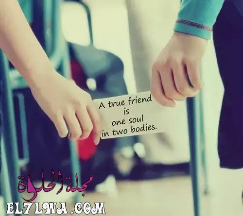 أقوال مأثورة عن الصداقة الحقيقية