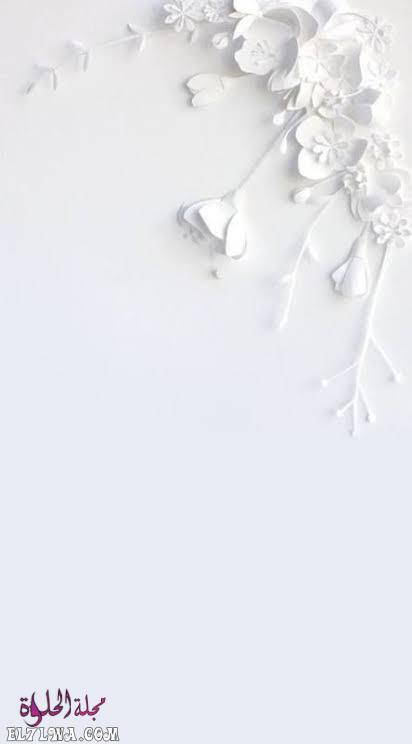 تنزيل صور خلفيات موبايل بيضاء كيوت
