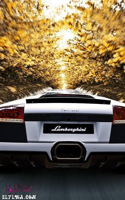 خلفيات سيارات لامبورجيني بيضاء جديدة