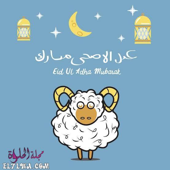 تهنئة خروف العيد عيد الأضحى 2021 تهنئة عيد الأضحى صور عيد الأضحى