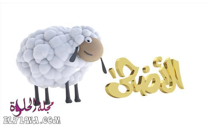 صور خروف الأضحى عيد الأضحى 2021 تهنئة عيد الأضحى صور عيد الأضحى